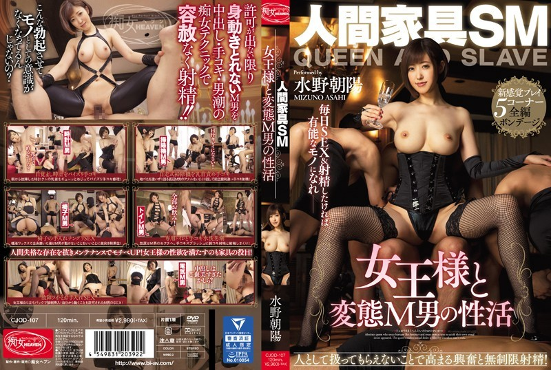 JAV Chijo Heaven CJOD-107 Life with the Human Furniture SM Queen and the Masochistic Man Asahi Mizuno