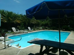 Paradise Oasis with Pool & Spa, Beaches Nearby!
